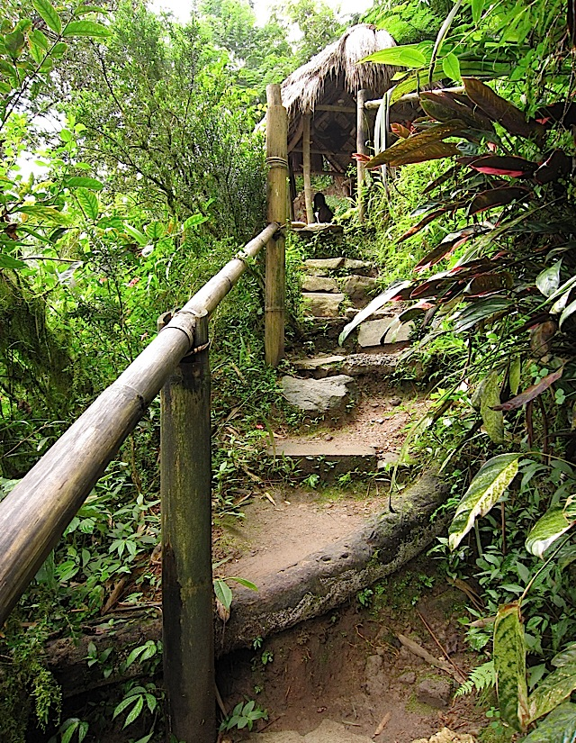 steep, muddy trail in Tam-awan Village in Baguio City