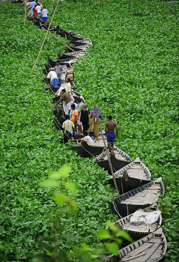 Floating boat bridge in Dhaka, Bangladesh
