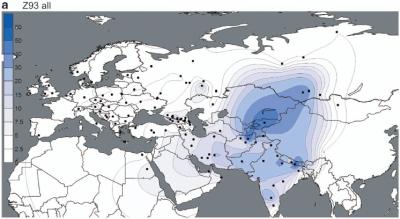 Y-DNA Haplogroup R1a | Peace & Justice ☮