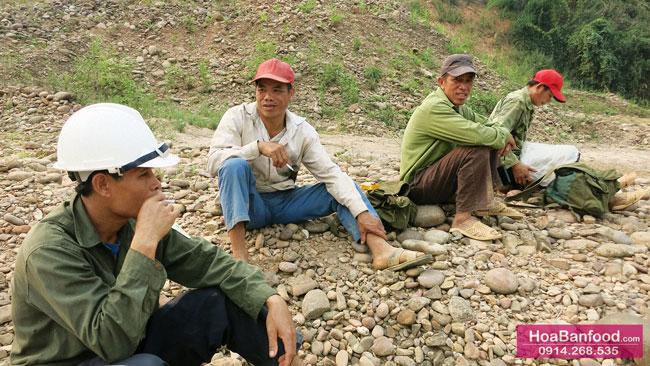 Khai thác Mật Ong Rừng ở Lai Châu - 1