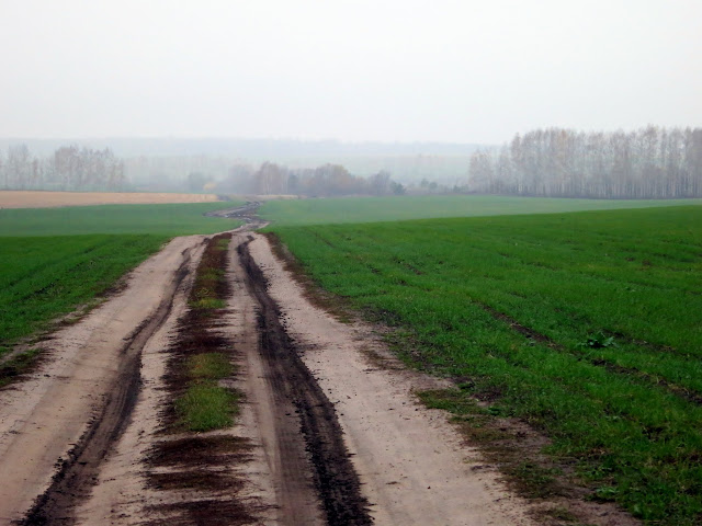 грунтовая полевая дорога