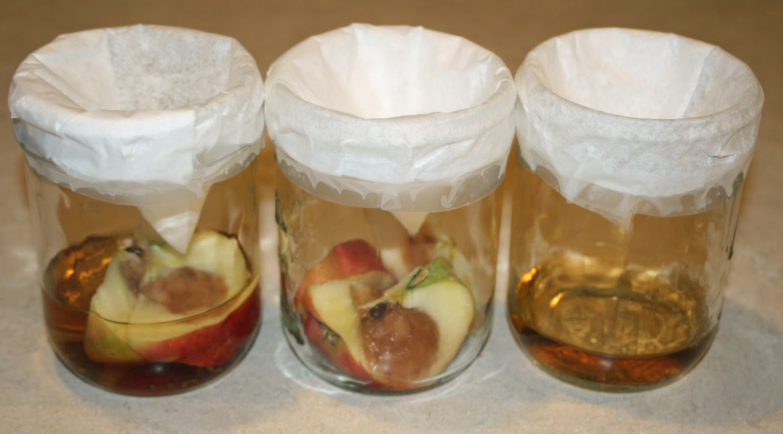 Food And Garden Dailies How To Get Rid Of Fruit Flies