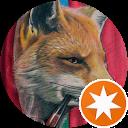 Rotten Fox