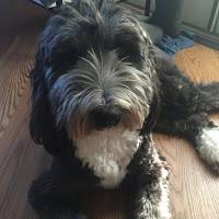 Kayla G's avatar