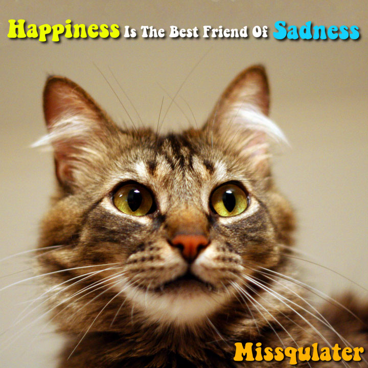Missqulater : Happiness Is The Best Friend Of Sadness
