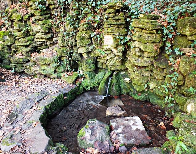 izvor parc simeria
