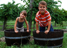 Kids stomping grapes