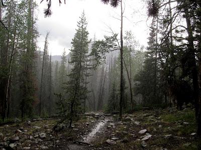 Rain and hail