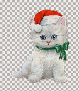 Christmas Kitty With Green Bow Sml Tubed By Emma B.jpg