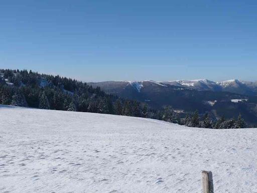 Près du petit Ballon, vue vers le Hohneck (1362 m)