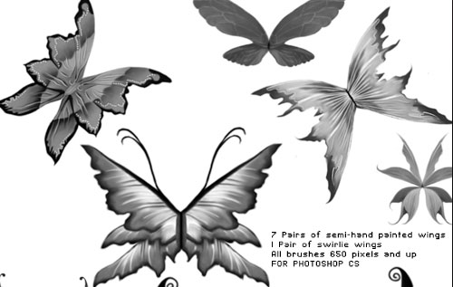 fantasy wings photoshop brushes