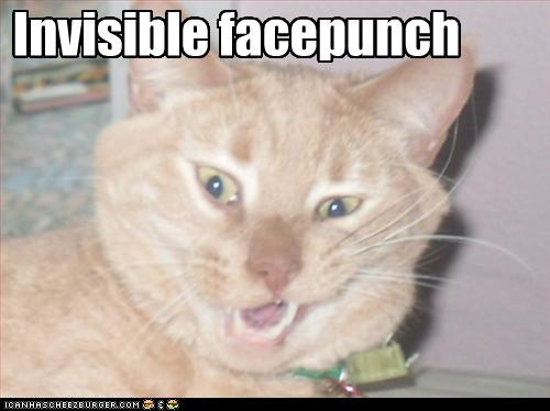 LOLcats, Cats And Invisible Objects
