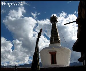 Entre monastères et lacs au Petit Tibet Indien - Page 2 13.Shey