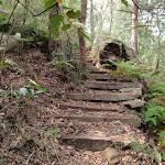 Timber steps (190907)