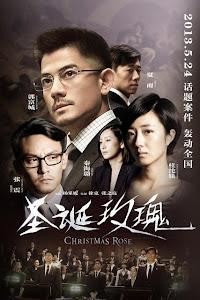Hoa Hồng Giáng Sinh - Christmas Rose poster