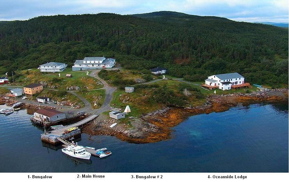 Woody Island Newfoundland And Labrador Canada