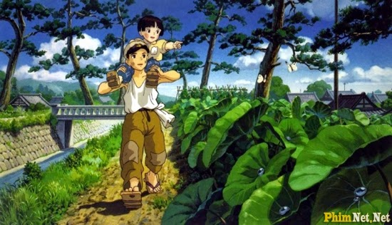 Mộ Đom Đóm - Grave Of The Fireflies - Image 2