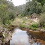 Glenbrook Creek (73815)