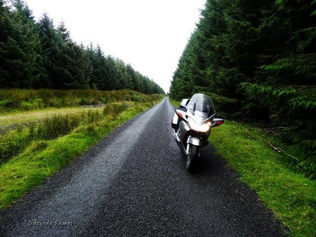 passeando - Passeando por caminhos Celtas - 2014 - Página 4 11%2B%2832%29