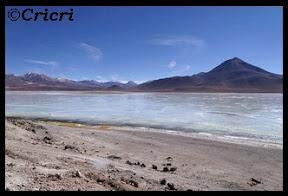 Un mois aux pays des Incas, lamas et condors (Pérou-Bolivie) - Page 3 LagunaBlanca