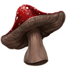 Funghi saltellanti