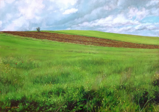 campo tras la lluvia, pintura en oleo de Fidel molina