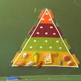 SALUD: Pirámide de la alimentación