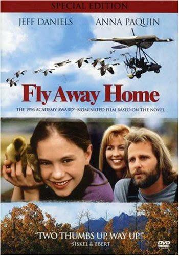 Fly Away Home- Chắp Cánh Bay Xa