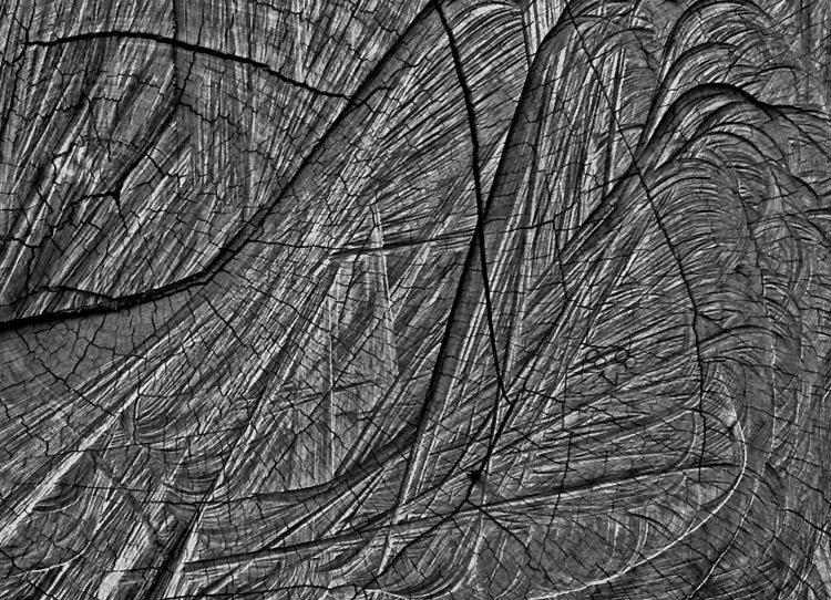Grafismo dos sulcos do corte pela moto-serra