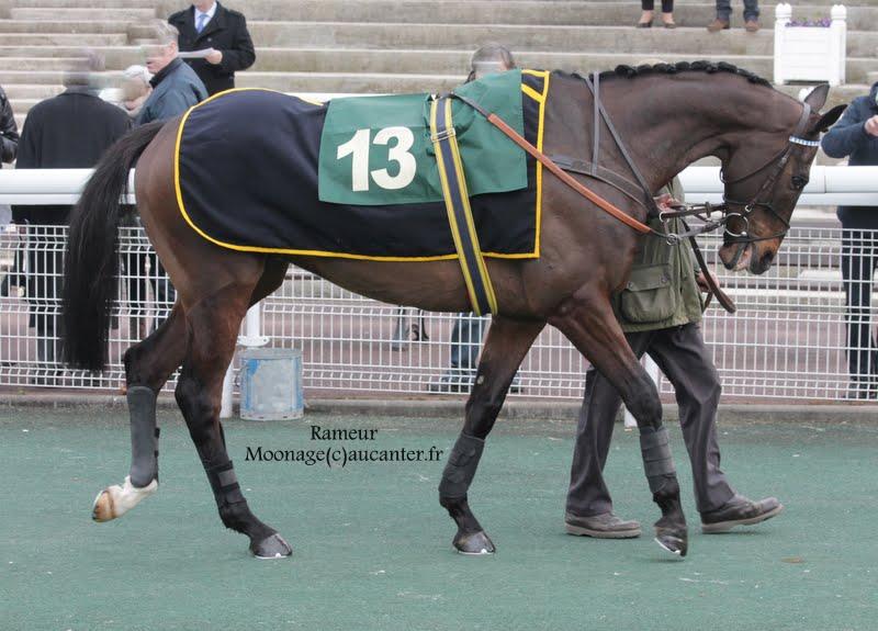 Photos Auteuil 14-03-2015 Rameur