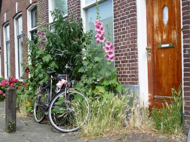 zomer in de oosterbadstraat