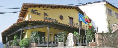Doña Gaudiosa