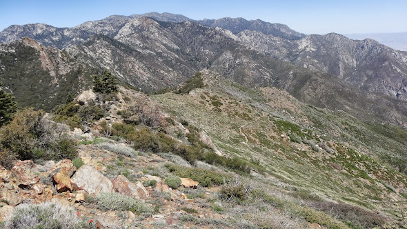 The PCT from high on Apache Peak