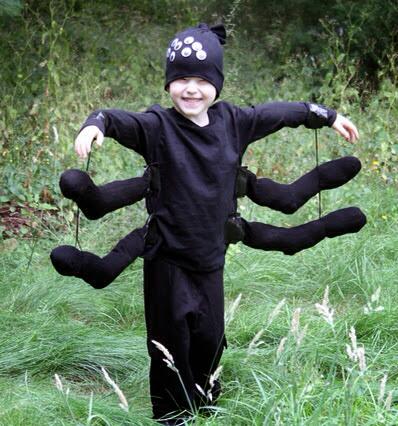 Pavouk karnevalová maska