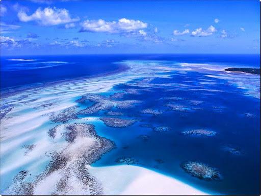 Coral Reef, Torres Strait Islands, Australia.jpg