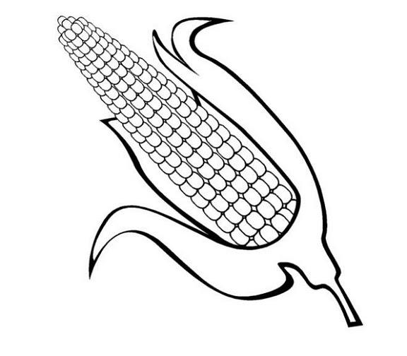 Pinto Dibujos: Mazorca de maíz para colorear