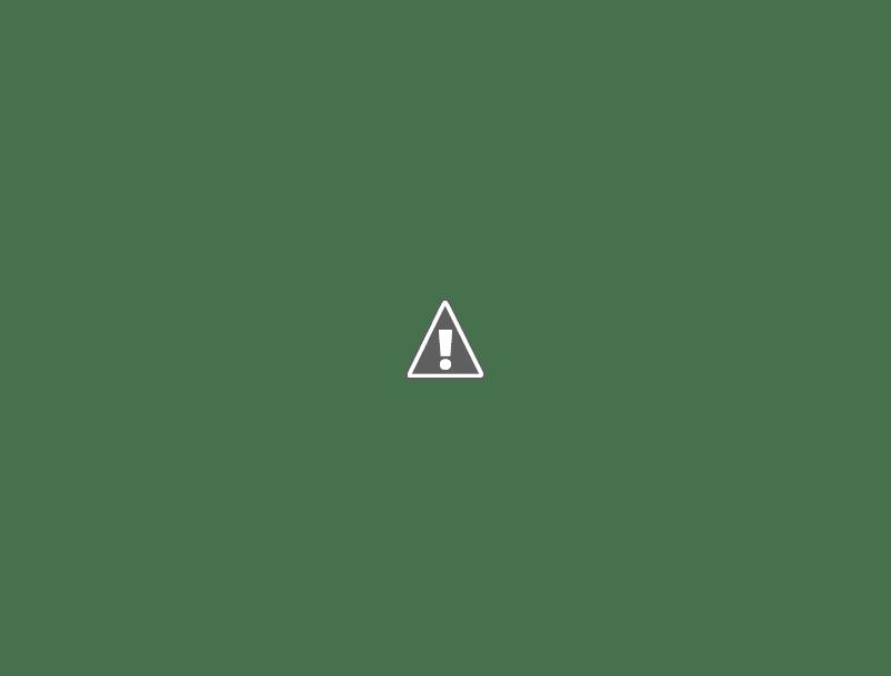 Camos rusos (en imágenes) Partizan%252Bberezka_435_9