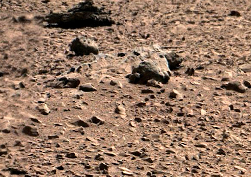 Curiosity%252520Pan%252520view%252520large.jpg3%252520dead%252520horse.jpg