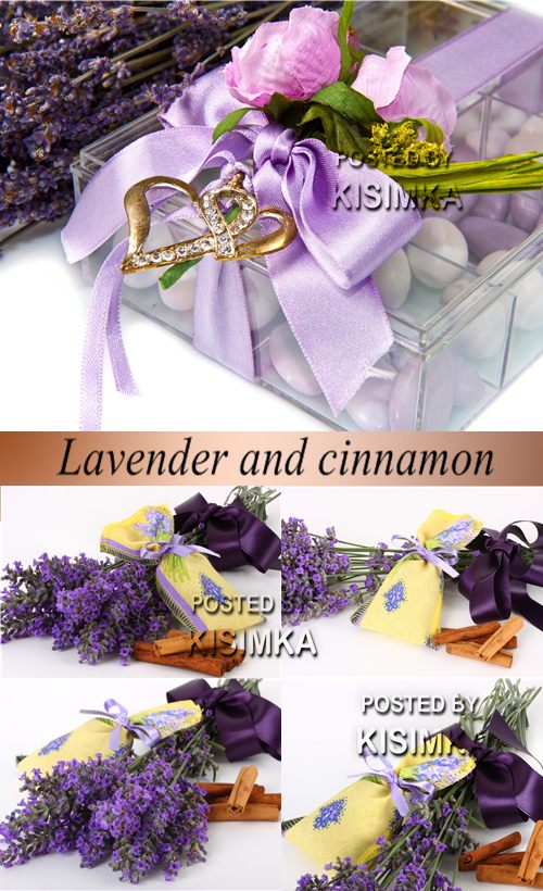 Stock Photo: Lavender and cinnamon