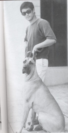 Bruce Lee and a dog