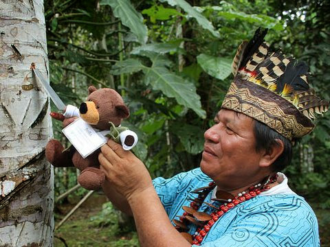 Tiny Bear Explores Big Questions in the Amazon! Met with the local medicine man
