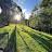 Ron Bennetts avatar image