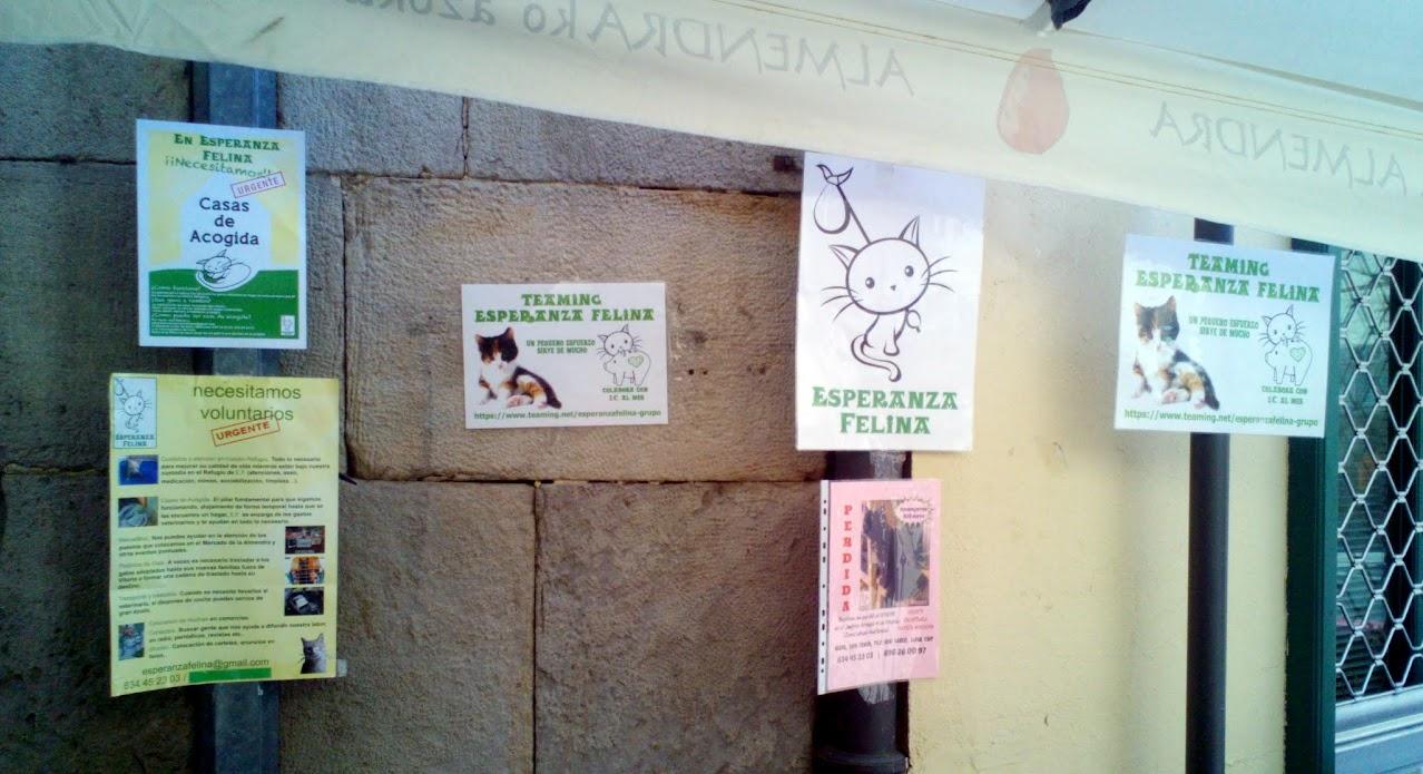 """Esperanza Felina en """"El Mercado de La Almendra"""" en Vitoria - Página 24 IMG-20150704-WA0032"""