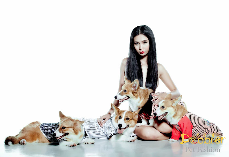 Dabbler Pet Fashion ảnh nuy đẹp cùng thú cưng