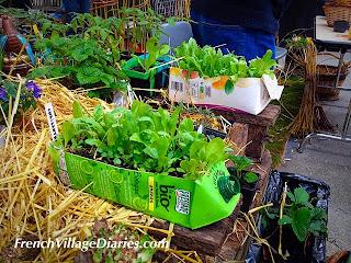 French village diaries Niort Printemps aux jardins garden show