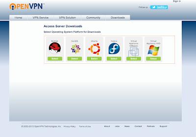 OpenVpnServer1