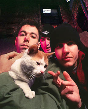 The Beastie Boys and a cat