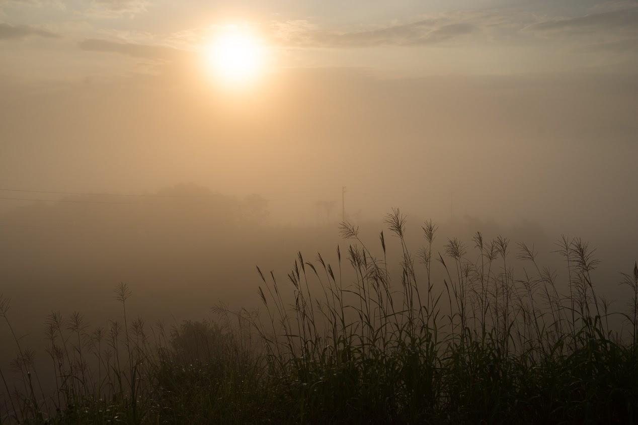 旧暦7月朔日の朝陽