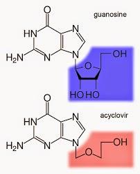 %252522acyclovir-guanosine.jpg%252522.jp