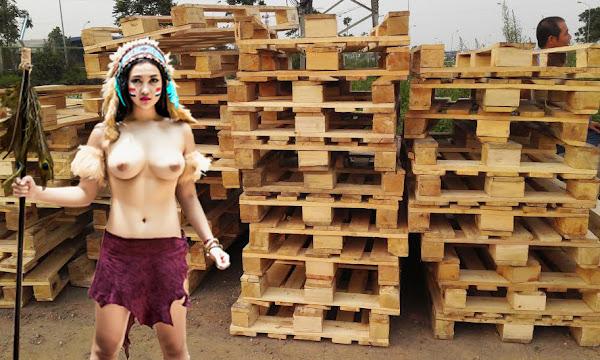 pallet gỗ thô sơn địa
